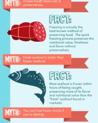 Frozen Myth-Fact Infographic